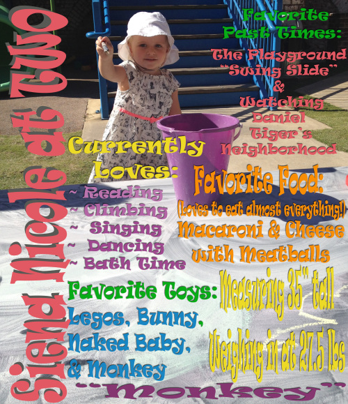 Post image for Siena's Spectacular Second Birthday Celebration